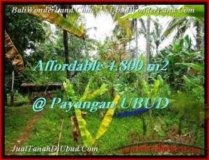 Exotic LAND FOR SALE IN UBUD TJUB486