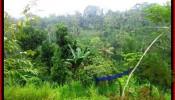 Exotic UBUD BALI 16,500 m2 LAND FOR SALE TJUB494