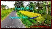 Exotic PROPERTY 700 m2 LAND IN Ubud Tegalalang FOR SALE TJUB497