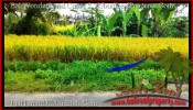 Beautiful PROPERTY 700 m2 LAND SALE IN Ubud Tegalalang TJUB497