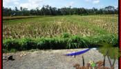 Exotic PROPERTY 2,800 m2 LAND IN Ubud Pejeng FOR SALE TJUB498