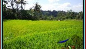 Beautiful PROPERTY LAND FOR SALE IN UBUD BALI TJUB513