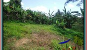 Affordable PROPERTY 3,400 m2 LAND IN Ubud Tengkulak FOR SALE TJUB514