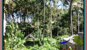 Affordable UBUD BALI 500 m2 LAND FOR SALE TJUB515