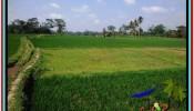 Affordable PROPERTY 1,700 m2 LAND IN Ubud Tegalalang FOR SALE TJUB518