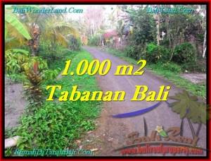 LAND FOR SALE IN Tabanan Selemadeg BALI TJTB242