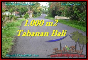 LAND FOR SALE IN Tabanan Selemadeg BALI TJTB243