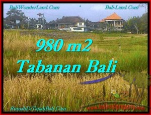 Exotic Tabanan Selemadeg BALI LAND FOR SALE TJTB244