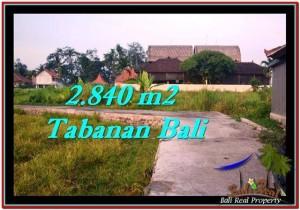 FOR SALE Affordable 2,840 m2 LAND IN TABANAN TJTB247
