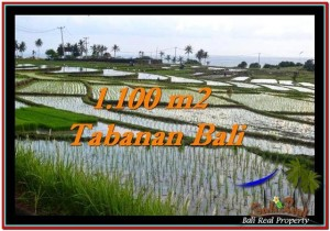 Exotic 1,100 m2 LAND FOR SALE IN TABANAN BALI TJTB248