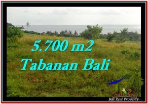 Beautiful TABANAN BALI 5,700 m2 LAND FOR SALE TJTB250