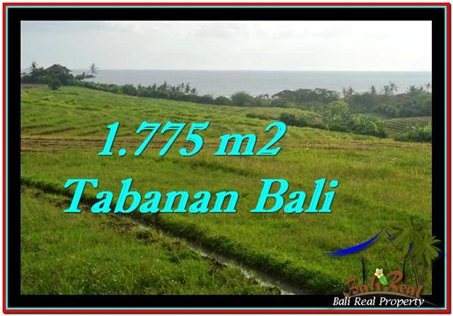 Magnificent 1,775 m2 LAND IN TABANAN BALI FOR SALE TJTB251