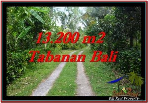 Beautiful PROPERTY TABANAN LAND FOR SALE TJTB255