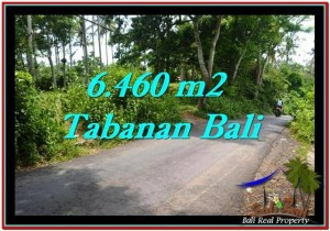 6,460 m2 LAND SALE IN TABANAN TJTB256