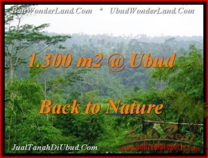 1,300 m2 LAND FOR SALE IN UBUD BALI TJUB481