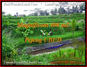 Exotic 400 m2 LAND SALE IN UBUD BALI TJUB483