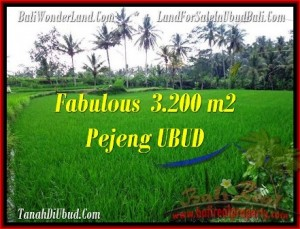 3,200 m2 LAND IN UBUD BALI FOR SALE TJUB484
