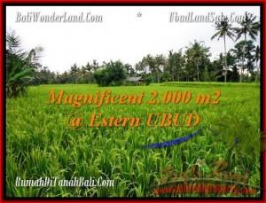 Affordable PROPERTY 2,000 m2 LAND IN Ubud Pejeng FOR SALE TJUB485