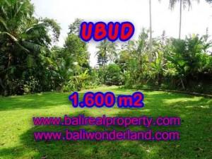 Exotic 1,600 m2 LAND SALE IN UBUD BALI TJUB416