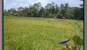 Exotic LAND FOR SALE IN UBUD TJUB522