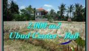 UBUD BALI 2,000 m2 LAND FOR SALE TJUB524