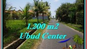 Affordable PROPERTY 1,200 m2 LAND IN Sentral Ubud FOR SALE TJUB525