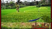 FOR SALE Exotic 9,400 m2 LAND IN UBUD BALI TJUB526