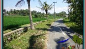 Beautiful PROPERTY LAND IN UBUD BALI FOR SALE TJUB528