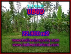 FOR SALE Exotic 22,800 m2 LAND IN UBUD TJUB409