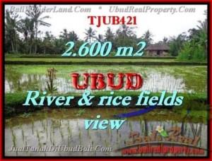 Affordable PROPERTY 2,600 m2 LAND FOR SALE IN Ubud Tegalalang TJUB421