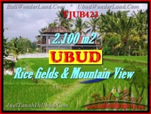 Affordable 2,100 m2 LAND IN UBUD BALI FOR SALE TJUB423