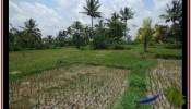 Affordable 940 m2 LAND SALE IN UBUD BALI TJUB531
