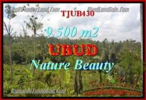 Exotic PROPERTY 9,500 m2 LAND FOR SALE IN Ubud Payangan TJUB430