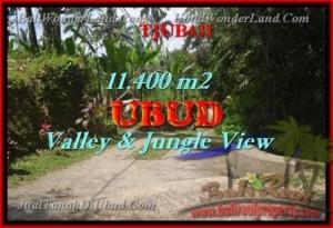 Exotic PROPERTY 11,400 m2 LAND FOR SALE IN Ubud Payangan TJUB431