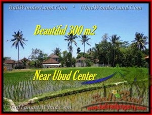 LAND IN Sentral Ubud BALI FOR SALE TJUB436