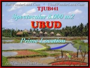 Beautiful UBUD BALI 8.000 m2 LAND FOR SALE TJUB441