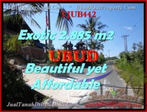 Magnificent 2.885 m2 LAND IN UBUD BALI FOR SALE TJUB442