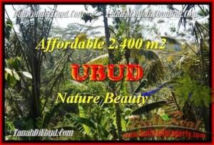 Magnificent PROPERTY LAND SALE IN Ubud Pejeng BALI TJUB454