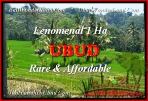 Exotic 10.000 m2 LAND IN UBUD FOR SALE TJUB456