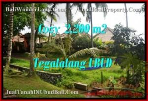 Beautiful PROPERTY Ubud Tegalalang 2,200 m2 LAND FOR SALE TJUB462