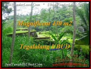 Beautiful PROPERTY LAND SALE IN UBUD TJUB466