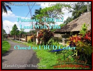 Exotic 5,100 m2 LAND IN UBUD BALI FOR SALE TJUB468