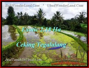 Magnificent PROPERTY UBUD LAND FOR SALE TJUB471