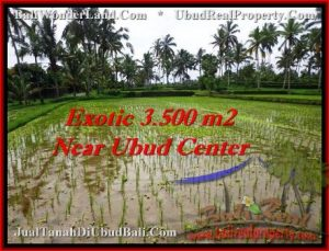 FOR SALE 3,500 m2 LAND IN UBUD TJUB477