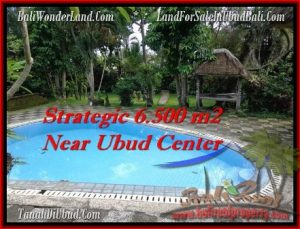 Magnificent 6,500 m2 LAND SALE IN UBUD BALI TJUB479