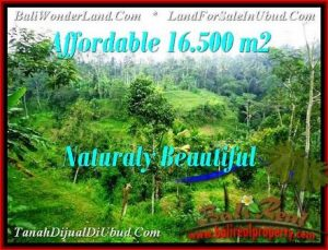 Affordable PROPERTY 16,500 m2 LAND IN Ubud Tampak Siring FOR SALE TJUB494