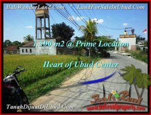 Affordable PROPERTY LAND SALE IN UBUD TJUB508