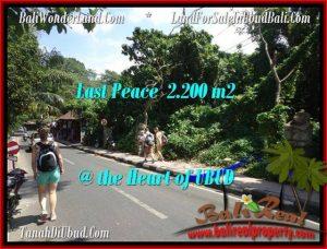 UBUD BALI 2,200 m2 LAND FOR SALE TJUB509