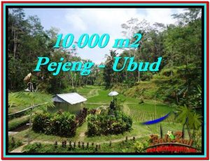 Exotic PROPERTY 10,000 m2 LAND SALE IN Ubud Tampak Siring TJUB519
