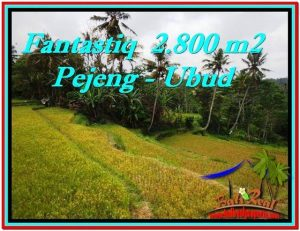 Exotic LAND IN UBUD FOR SALE TJUB521